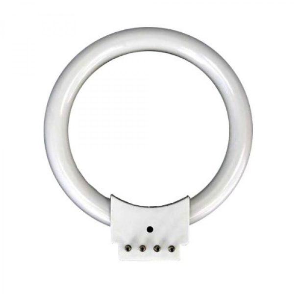 Fluorescent Ring light Bulb
